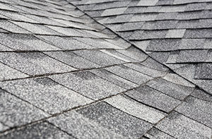 Roofing Companies Citrus Heights CA